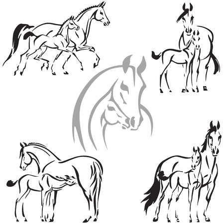 Mare and foal themes