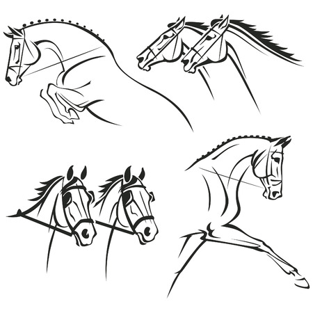 riding horse: Reduced views of heads and heads and shoulders of horses. Each graphic symbolizes one of four most popular equestrian sports: show jumping, horse-race, harnessing and dressage.