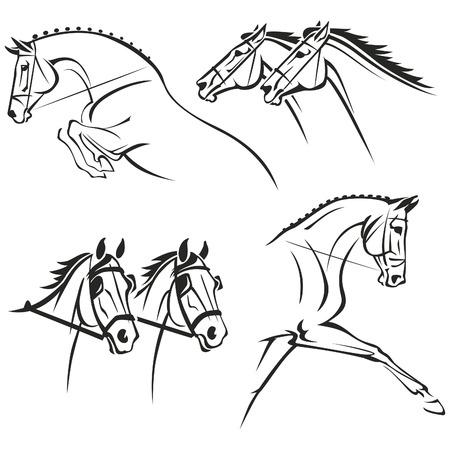 cavallo che salta: Viste ridotte di testa e testa e le spalle di cavalli. Ogni grafico simboleggia uno dei quattro più popolari sport equestri: salto ostacoli, cavalli da corsa, sfruttando e dressage.