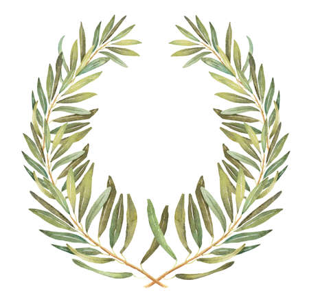 olive wreath: Olive wreath watercolor illustration Stock Photo