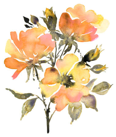 Botanical watercolor painting with roses flower in summer bloom