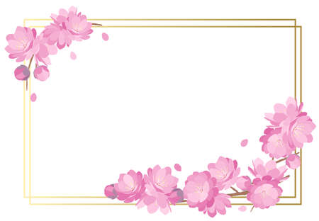 Peach blossoms spring frame background