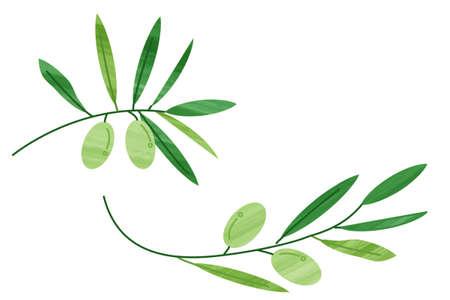 Olive oil Italian food icon