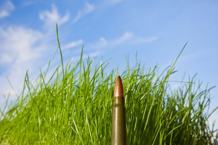 armaments: Bullet on a background of sky and grass- environment protection concept