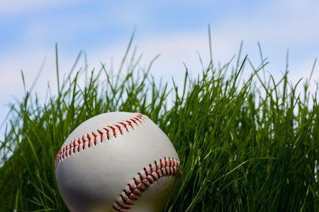 Macro of baseball hidden in green grass over blue sky background Stock Photo