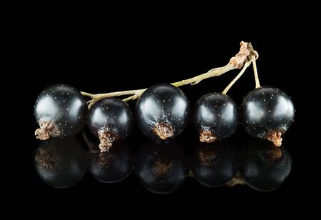 Macro of black currant on black reflective background