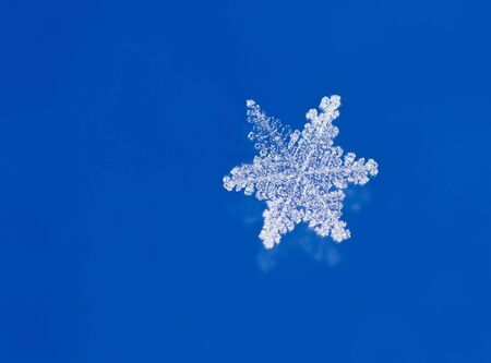 Super macro shot of natural glitter snow flakes Stock Photo - 7713166