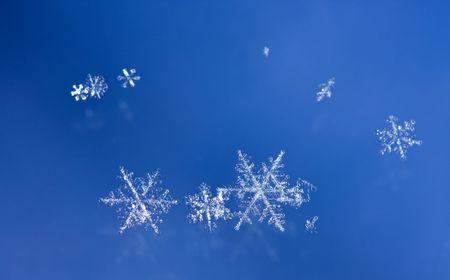 Macro van natuurlijke schittering sneeuwvlokken Stockfoto