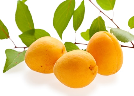 leafage: Set of ripe apricots and leafage isolated on white