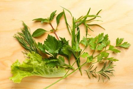 まな板: Fresh herbs composition on chopping board
