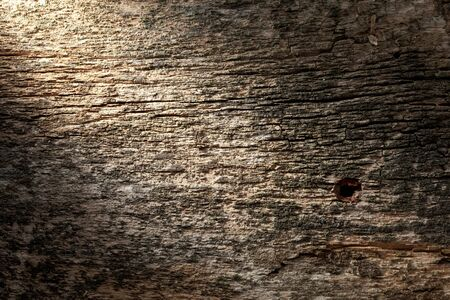Grungy background - macro of aged grey wood panel with tack hole photo