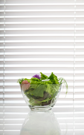 window blinds: Bowl of mixed green diet salad on white table over sun blind background, copyspace