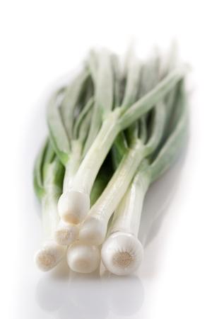 cebolla blanca: Primer plano de la cebolla manojo verde sobre fondo blanco