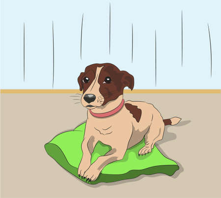 dog lies on pillow vector illustration
