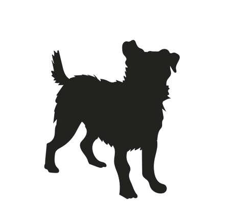 dog stands vector illustration