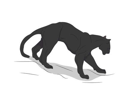 panther silhouette vector illustration 向量圖像