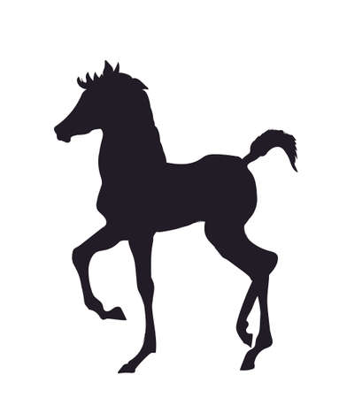horse standing vector illustration Çizim