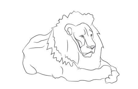 lion lies vector illustration