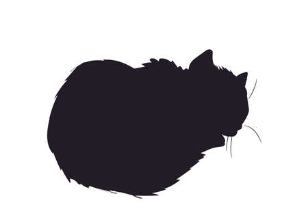 Cat silhouette, vector, white background