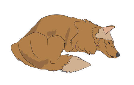 dog lies vector illustration Vector Illustration