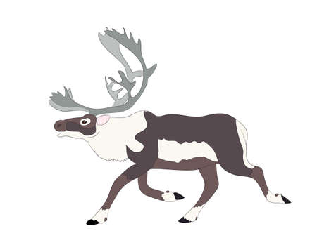 drawing of the deer which runs vector illustration