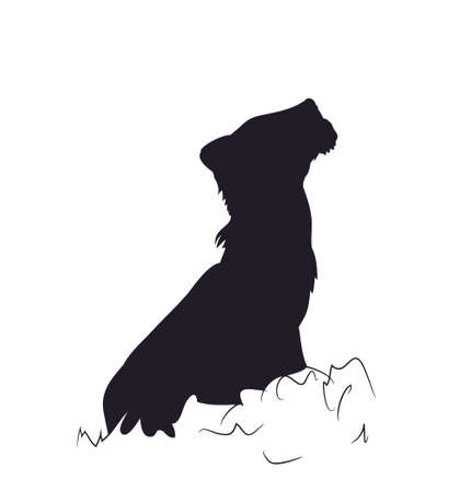 small lion sits silhouette vector illustration  イラスト・ベクター素材