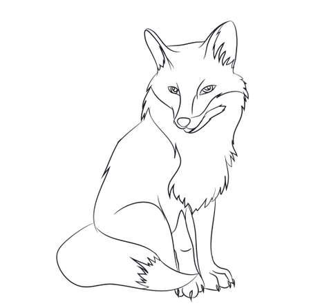Fuchs, der Vektorillustration sitzt