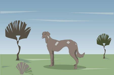 dog standing on nature vector illustration