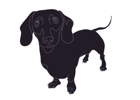 dog stands silhouette vector illustration Illustration