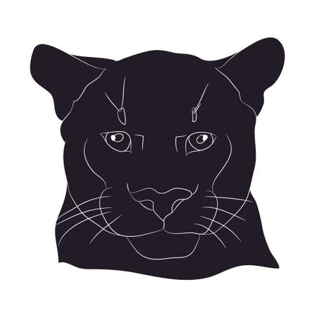 portrait of a cougar silhouette vector illustration