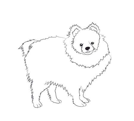 dog stands vector illustration 矢量图像