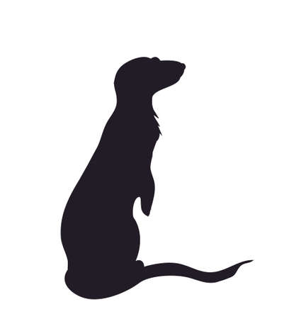 silhouette of a meerkat vector illustration