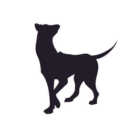 vector image dog stands, silhouette, vector, white background, vector