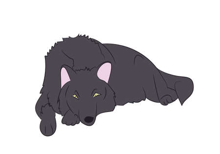 vector image wolf asleep color vector wolf asleep color color vector