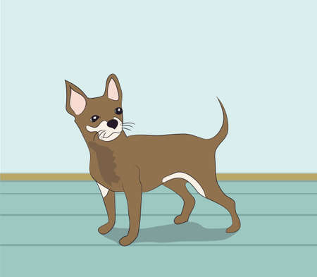 dog is a brown vector in the room