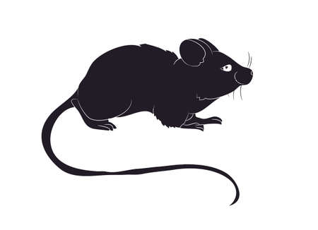 mouse stands drawing silhouette vector illustration