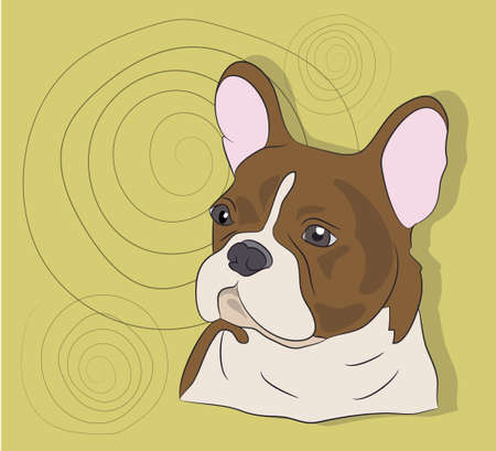 portrait of a French bulldog, dog, on a background, vector