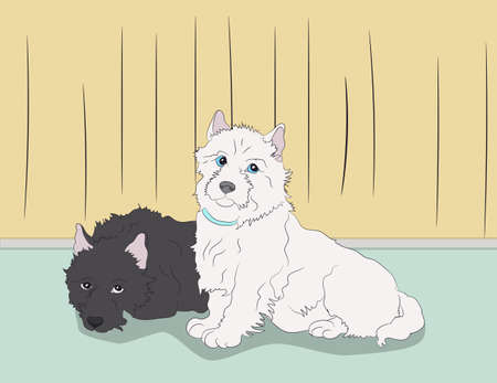 vector illustration of a dog that lies in the room, vector