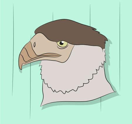 vector illustration of a portrait of an eagle, drawing color, color background Illustration