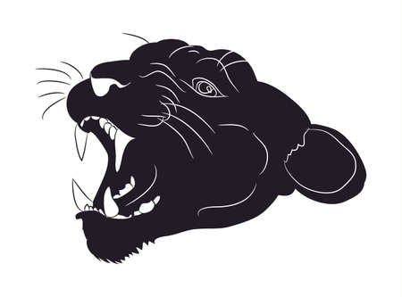 portrait of a cougar silhouette, vector, white background Illustration