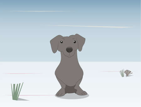 vector illustration of a dachshund that sits on the street, vector Illustration