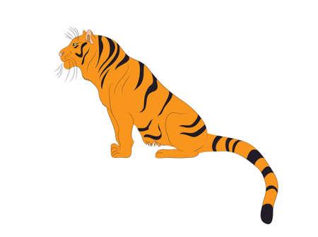 Ilustración vectorial de un tigre que se sienta, color de dibujo, vector, fondo blanco.