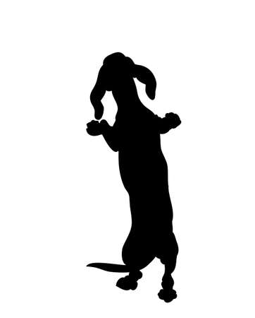 dog stands, silhouette, vector, white background