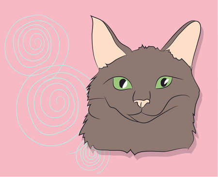 vector illustration, portrait of a cat, bright background, vector