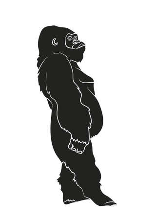 vector illustration of a gorilla, drawing silhouette, vector, white background Banque d'images - 129066939