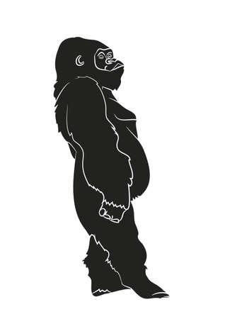 Vektor-Illustration eines Gorillas, Zeichnung Silhouette, Vektor, weißer Hintergrund Vektorgrafik