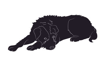 dog lies drawing silhouette, vector, white background