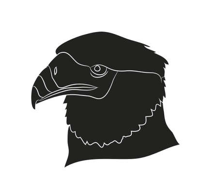 vector illustration of a portrait of an eagle, silhouette, vector, white background Banque d'images - 129066994