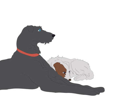 dogs lies, color drawing, vector, white background