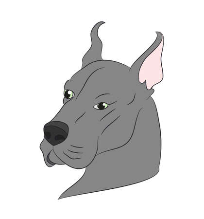 profile portrait of a dog, look  vector, white background